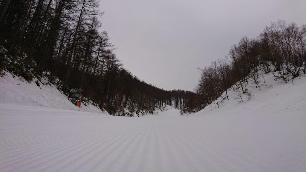 上部は雪でした